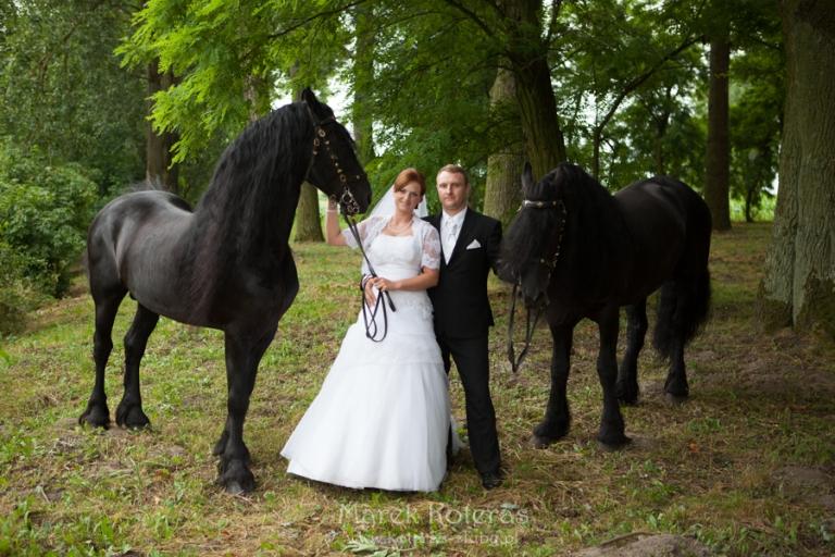 l_m_61_MG_6578  Lidia & Marcin l m 61 MG 6578 pp w768 h512