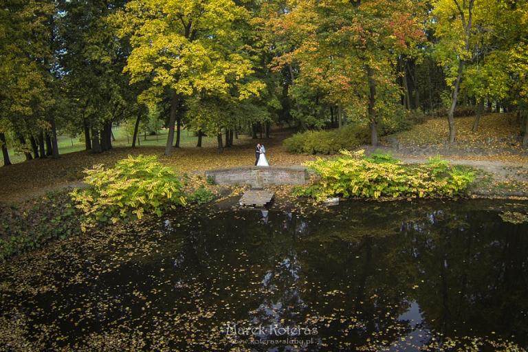 DCIM101GOPRO  Mimozami jesień się zaczyna :) G0176659 pp w768 h512